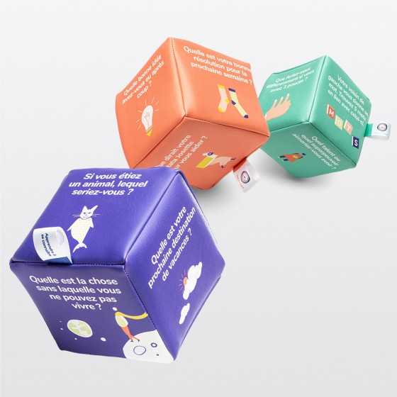 Pack de 3 cubes icebreakers