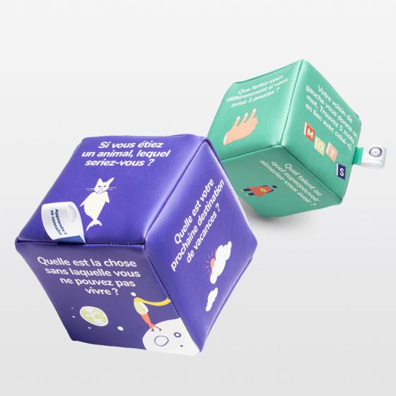 Pack de 2 cubes icebreakers